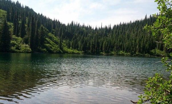 Озеро Флатхед – жемчужина скалистых гор в США. Озеро Флатхед – жемчужина 1
