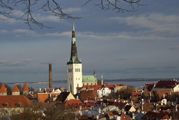 Интересные факты об Эстонии. Интересные факты об Эстонии 1