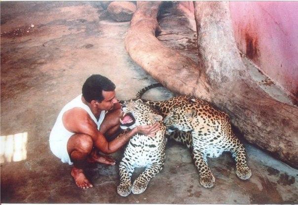 Детский дом для животных-сирот в Индии. Детский дом для животных-сирот 5
