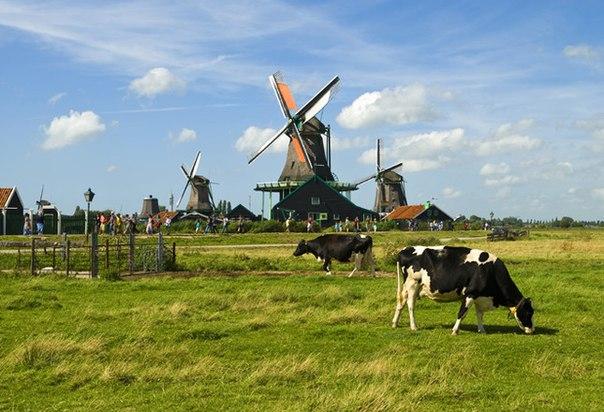 Деревня Заансе-Сханс, Нидерланды. Деревня Заансе-Сханс 4