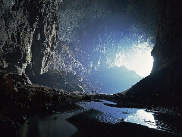 Удивительный мир дикой природы: остров Борнео