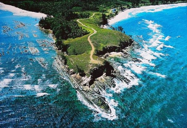Удивительный мир дикой природы: остров Борнео. Удивительный мир дикой природы 5