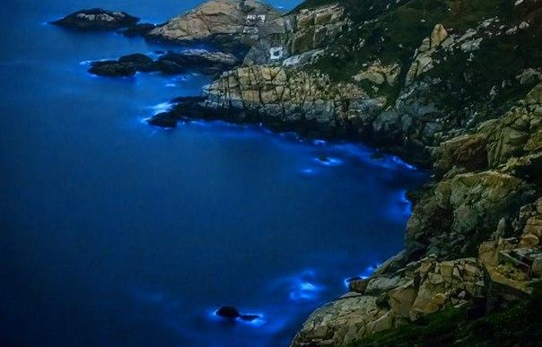 Удивительные заливы с невероятной подсветкой воды. Удивительные заливы с 3