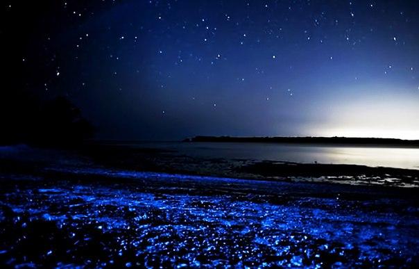Удивительные заливы с невероятной подсветкой воды. Удивительные заливы с 4