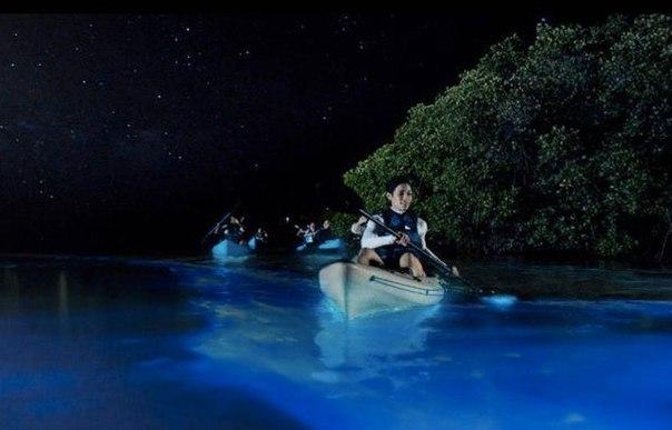 Удивительные заливы с невероятной подсветкой воды. Удивительные заливы с 5