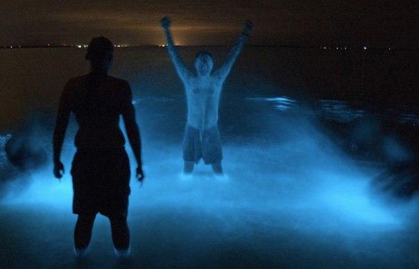 Удивительные заливы с невероятной подсветкой воды. Удивительные заливы с 7