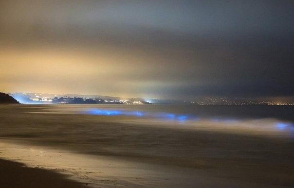 Удивительные заливы с невероятной подсветкой воды. Удивительные заливы с 8