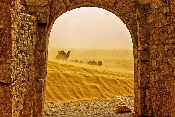 45 интереснейших фактов о Тунисе. 45 интереснейших фактов о 1