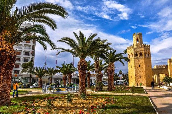 45 интереснейших фактов о Тунисе. 45 интереснейших фактов о 6