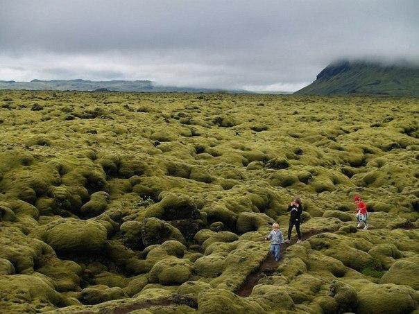 Живописные лавовые поля Исландии. Живописные лавовые поля 3