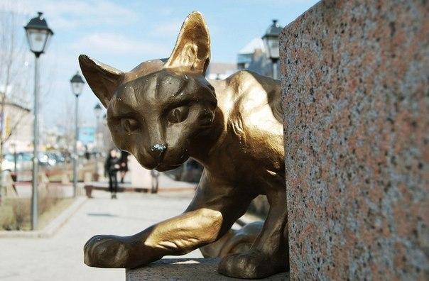 Сквер Сибирских кошек: память о великом подвиге маленьких животных. Сквер Сибирских кошек: память 1