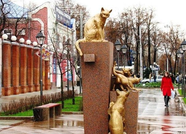Сквер Сибирских кошек: память о великом подвиге маленьких животных. Сквер Сибирских кошек: память 8