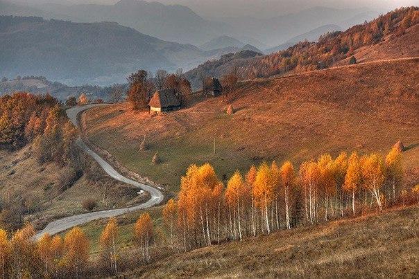 Осень не за горами. Осень не за горами 6