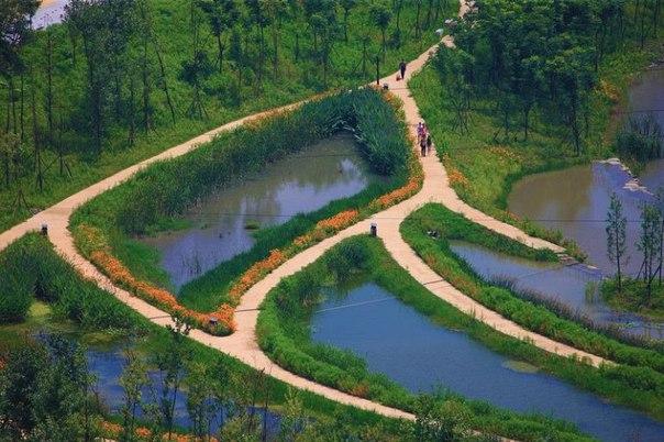 Живописный парк Янвэйчжоу в Китае. Живописный парк Янвэйчжоу в 8
