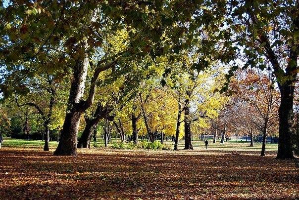 Парк Варошлигет в Будапеште — от купален до зоопарка