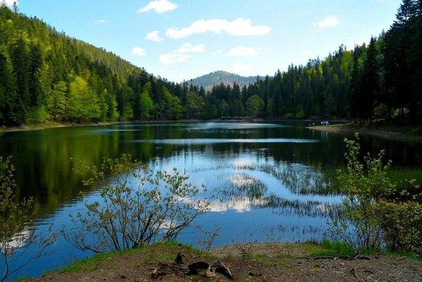 Синевир - самое красивое озеро Украинских Карпат. Синевир - самое красивое озеро 1