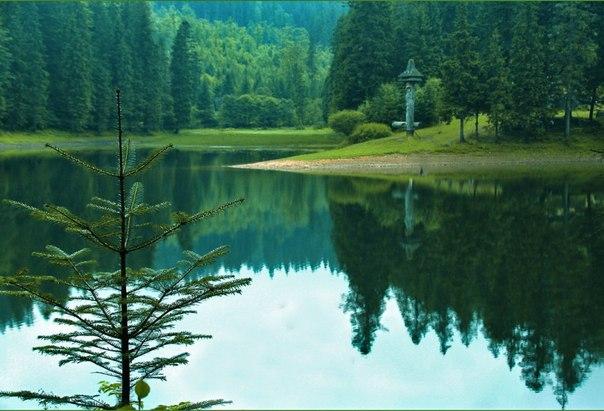 Синевир - самое красивое озеро Украинских Карпат. Синевир - самое красивое озеро 4