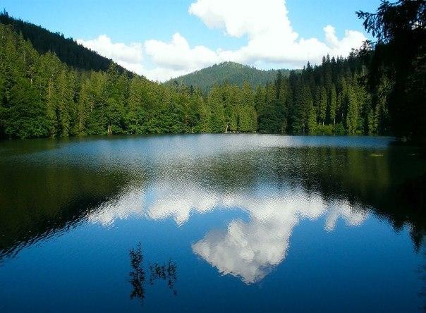 Синевир - самое красивое озеро Украинских Карпат. Синевир - самое красивое озеро 8