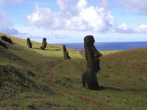 Статуи Моаи на острове Пасхи. Статуи Моаи на острове Пасхи 4