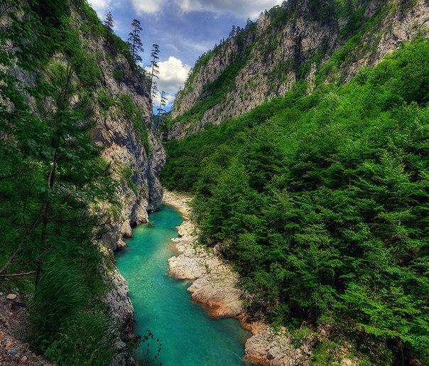 Река Тара в парке Дурмитор, Черногория. Река Тара в парке Дурмитор 1