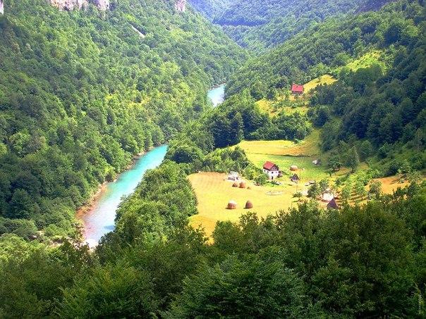 Река Тара в парке Дурмитор, Черногория. Река Тара в парке Дурмитор 2