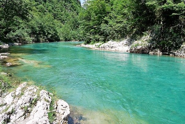 Река Тара в парке Дурмитор, Черногория. Река Тара в парке Дурмитор 4