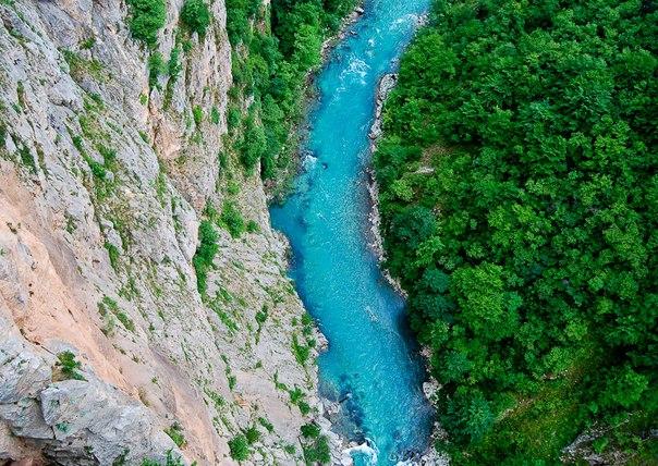 Река Тара в парке Дурмитор, Черногория. Река Тара в парке Дурмитор 8