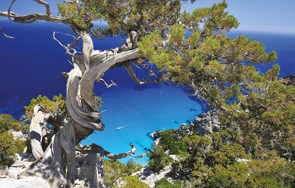 Остров Сардиния - один из самых ярких регионов Италии. 14968.jpeg