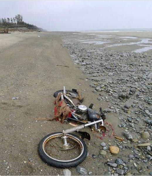 Чего только не находят люди на пляже!. Чего только не находят люди на 2